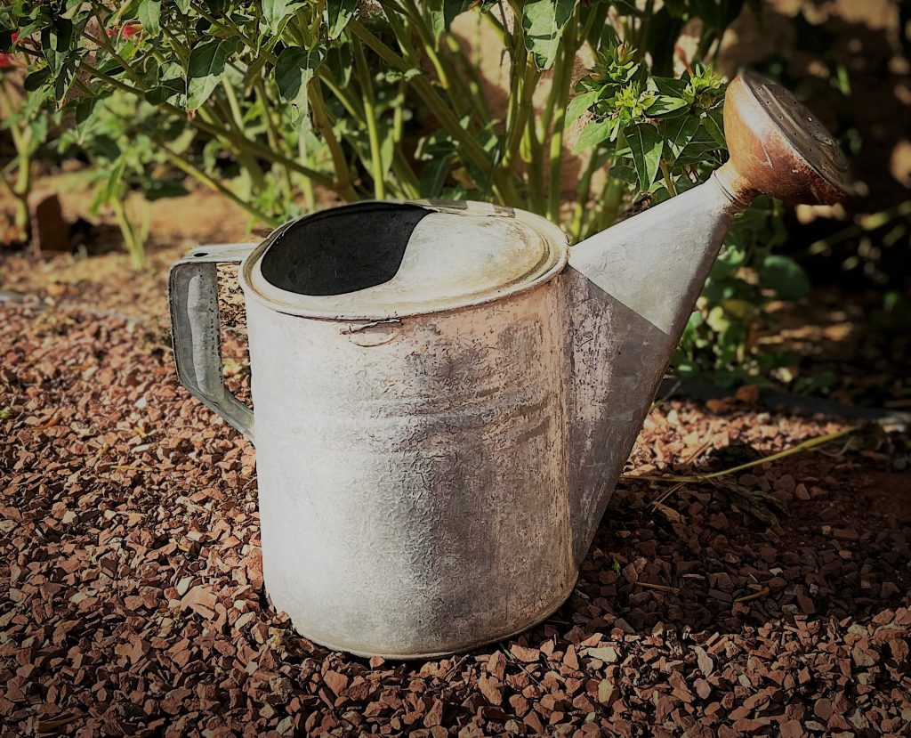 Gardening is therapeutic photo of watering can